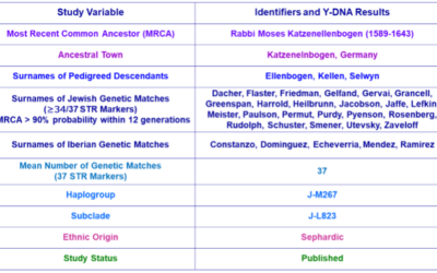 Y-DNA Research Studies of Rabbinical Lineages and Their Importance to Jewish Genealogy